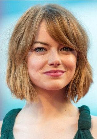 Bob Cut with short mane without bangs