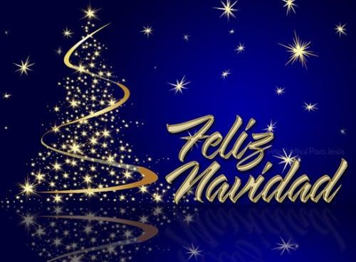 Las Mejores Felicitaciones De Navidad 2019.107 Felicitaciones De Navidad Para Compartir Y Felicitar