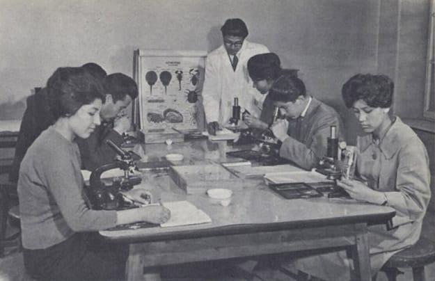 33-mujeres afganas