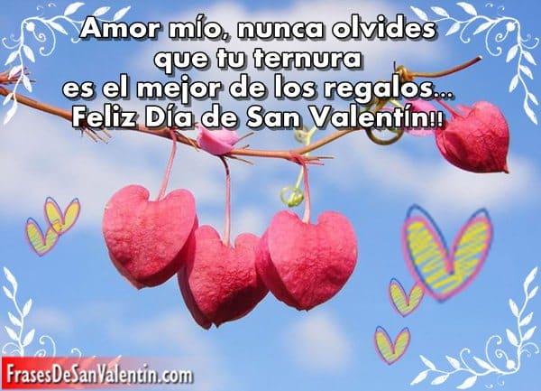 Frases De Amor Del Dia De San Valentin Para Mi Novia Citas