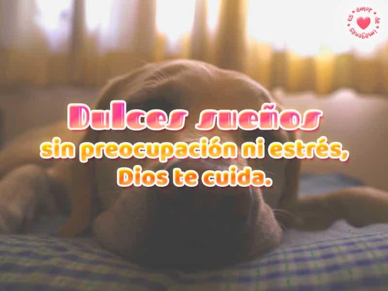 107 Frases De Buenas Noches Para Compartir Con Mensajes Para