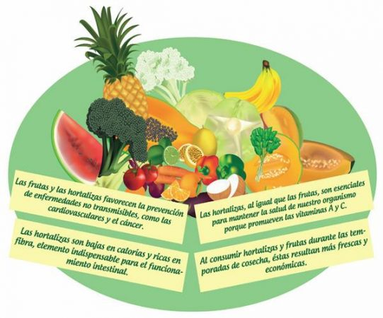 nutricionista.jpg18