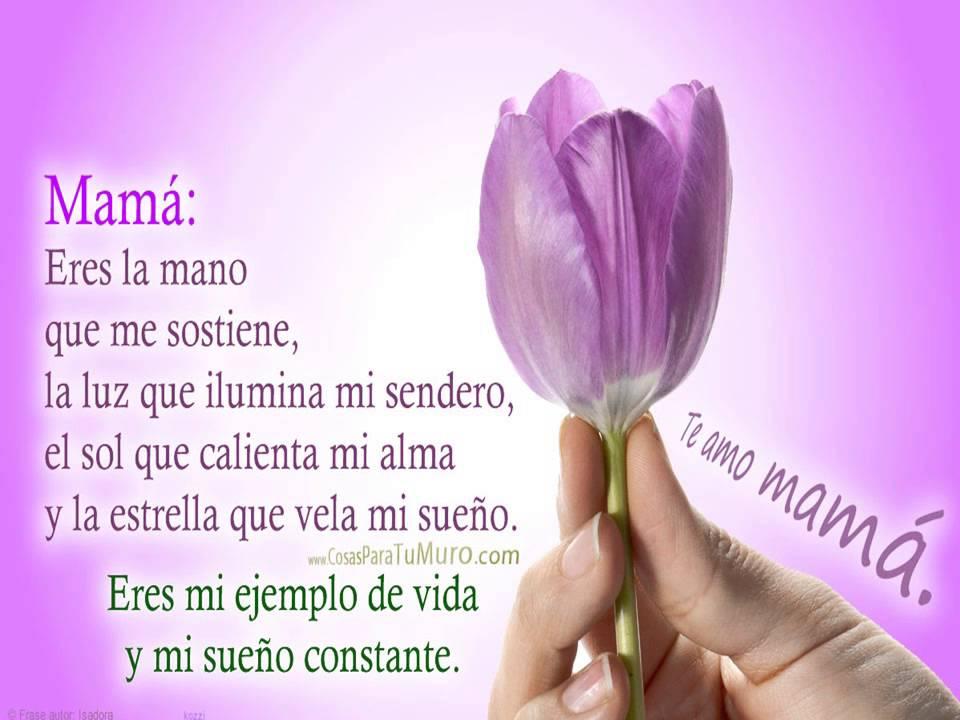 ¿Como decir te amo mamá y hacer feliz a tu madre ... Y Tu Mama Tambien