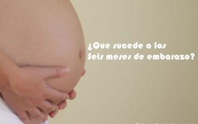 seis meses embarazo