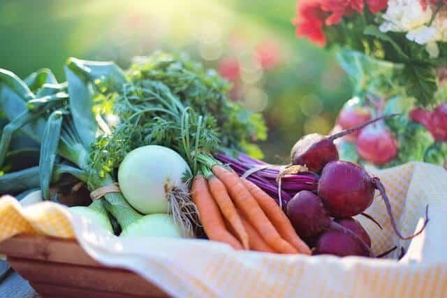 vegetales alimentos embarazadas